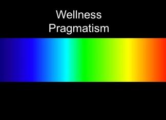 wellness pragmatist