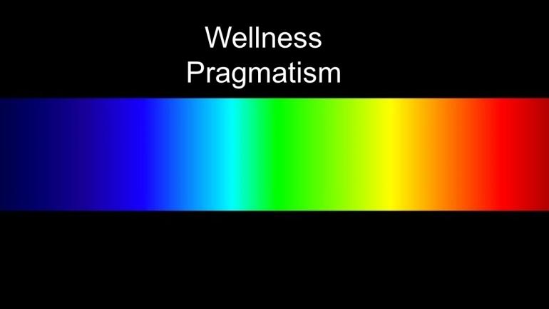 The Wellness Pragmatist